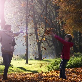 Herbstzeit - Goldener Oktober